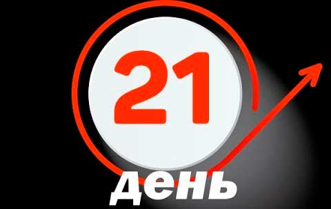 21 день